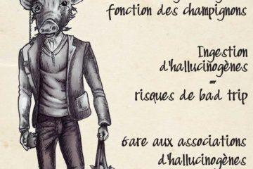 Champignons : hallucinogènes